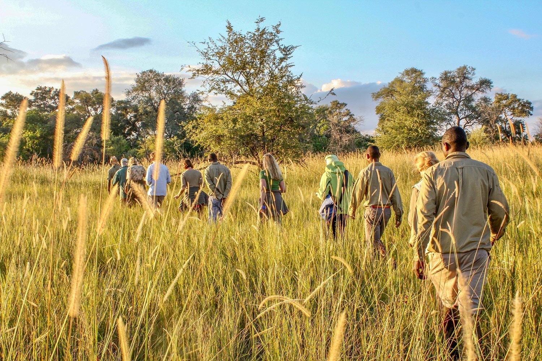 Ruta Okavango