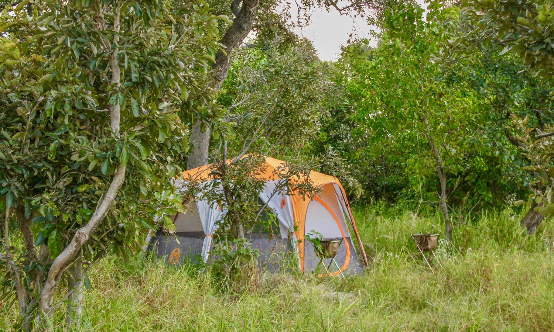Alojamiento Okavango