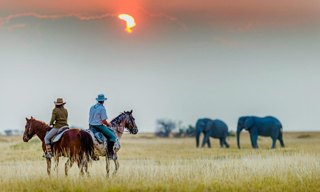 Safari a caballo en Botswana: Okavango & Kalahari
