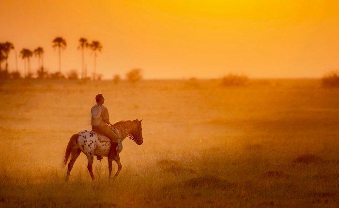 Safari a Botswana