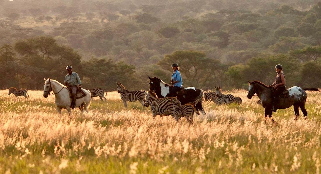 Safari a caballo en reserva privada en Limpopo, Sudáfrica