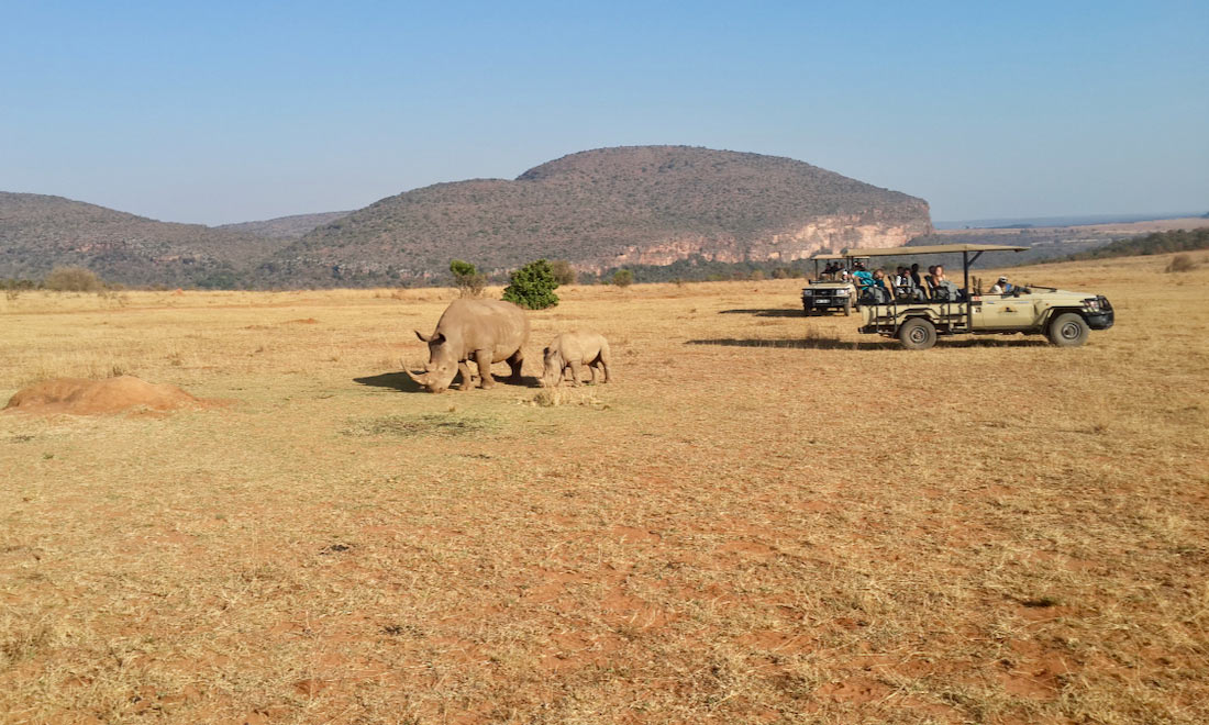 Safari a caballo