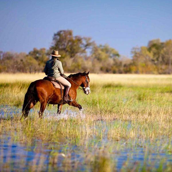 Safaris a caballo españa