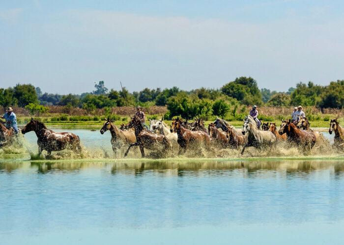 Ruta a Caballo en Andalucía